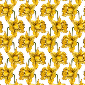 DAFFODILS Watercolored pattern for local jeweller, Calado.ph. 2018.